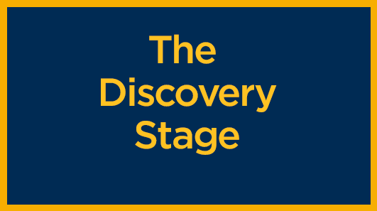 the-discovery-stage